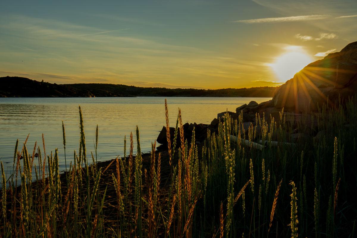 Solnedgång i Grebbestad