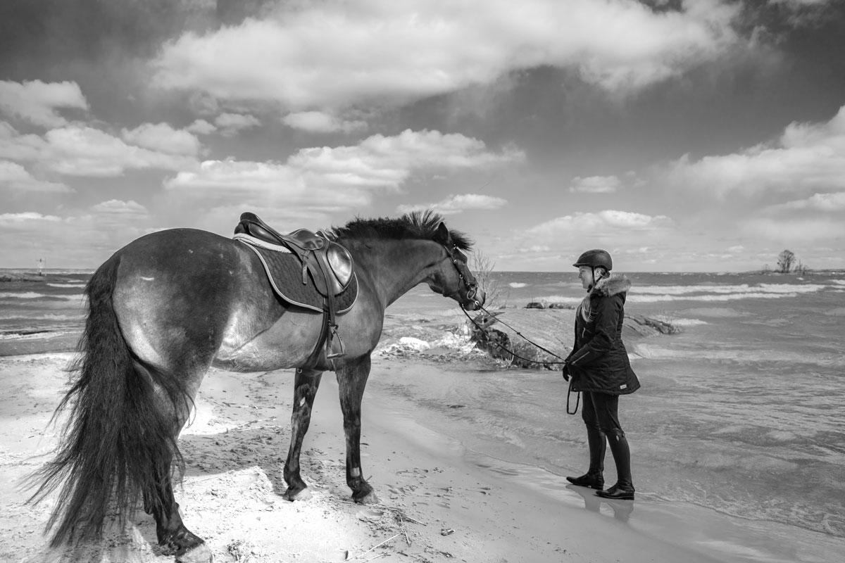 Ryttare med häst